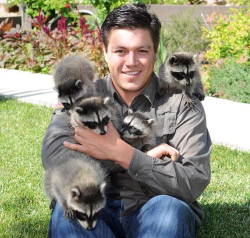 Raccoon Removal San Diego